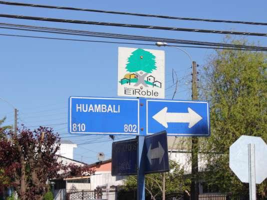 """Racconto Ñuble extiende una semana  más el plazo para """"El Roble en sepia"""""""