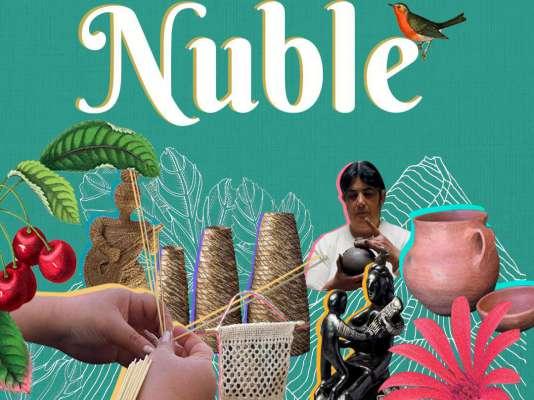 Ferias Virtuales de Artesanía de Ñuble ofrecen envíos gratis